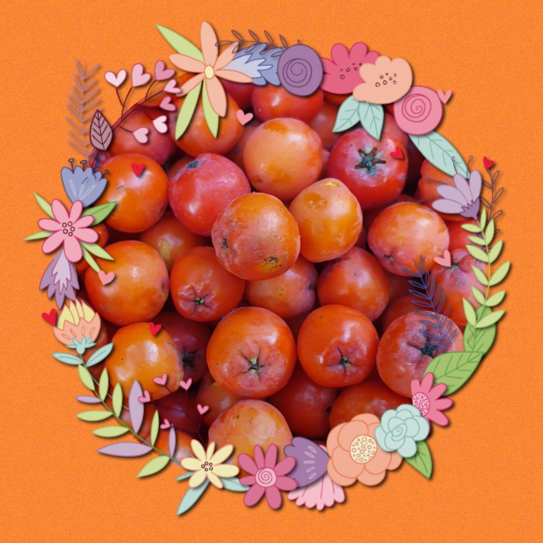 Rowan berries in a decorative floral circle