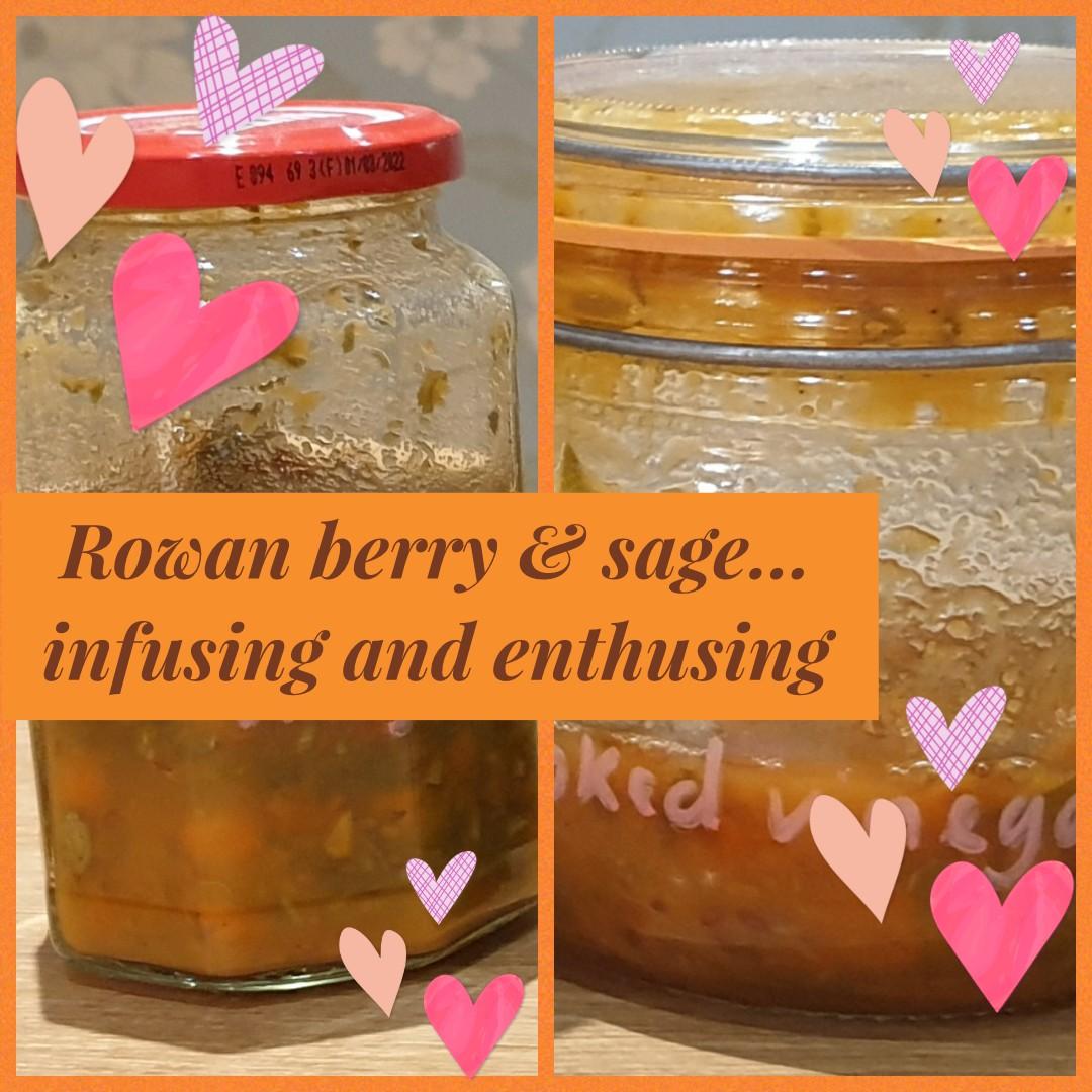 rowan and sage infusing